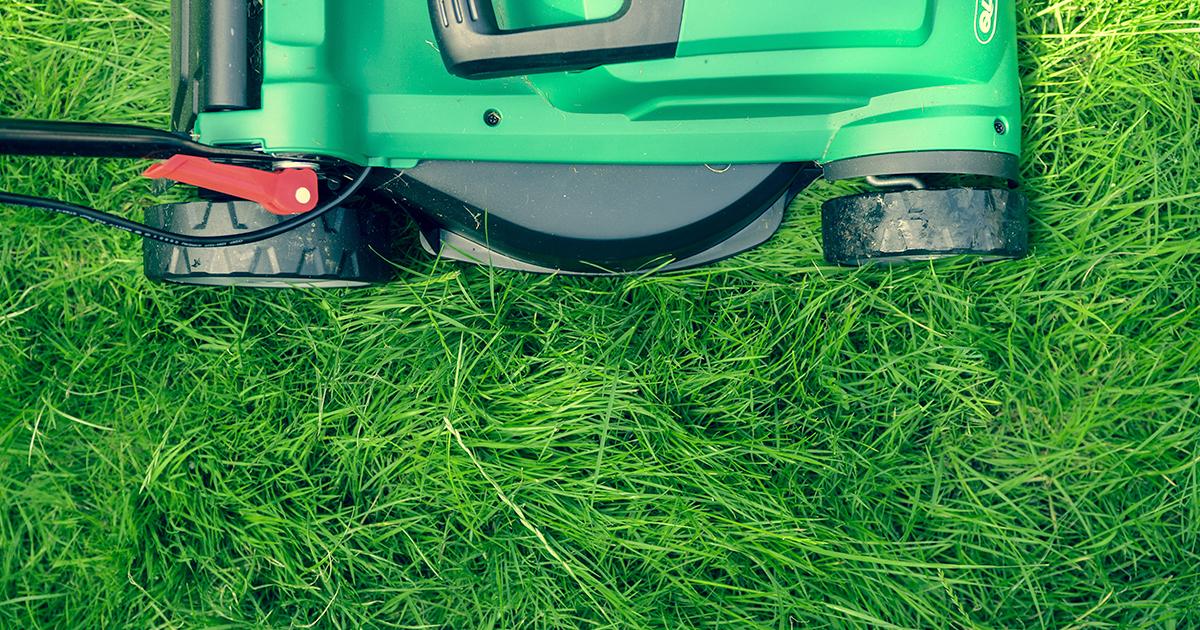 Än är det inte klippt! Så väljer du rätt gräsklippare.